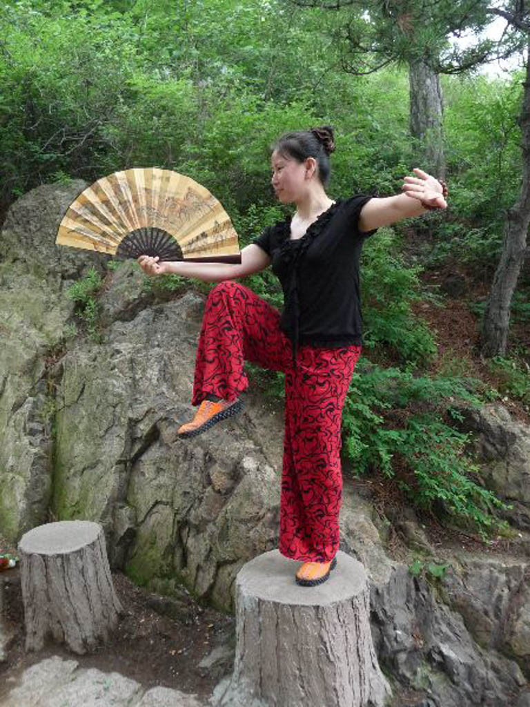 Wang Yan Li