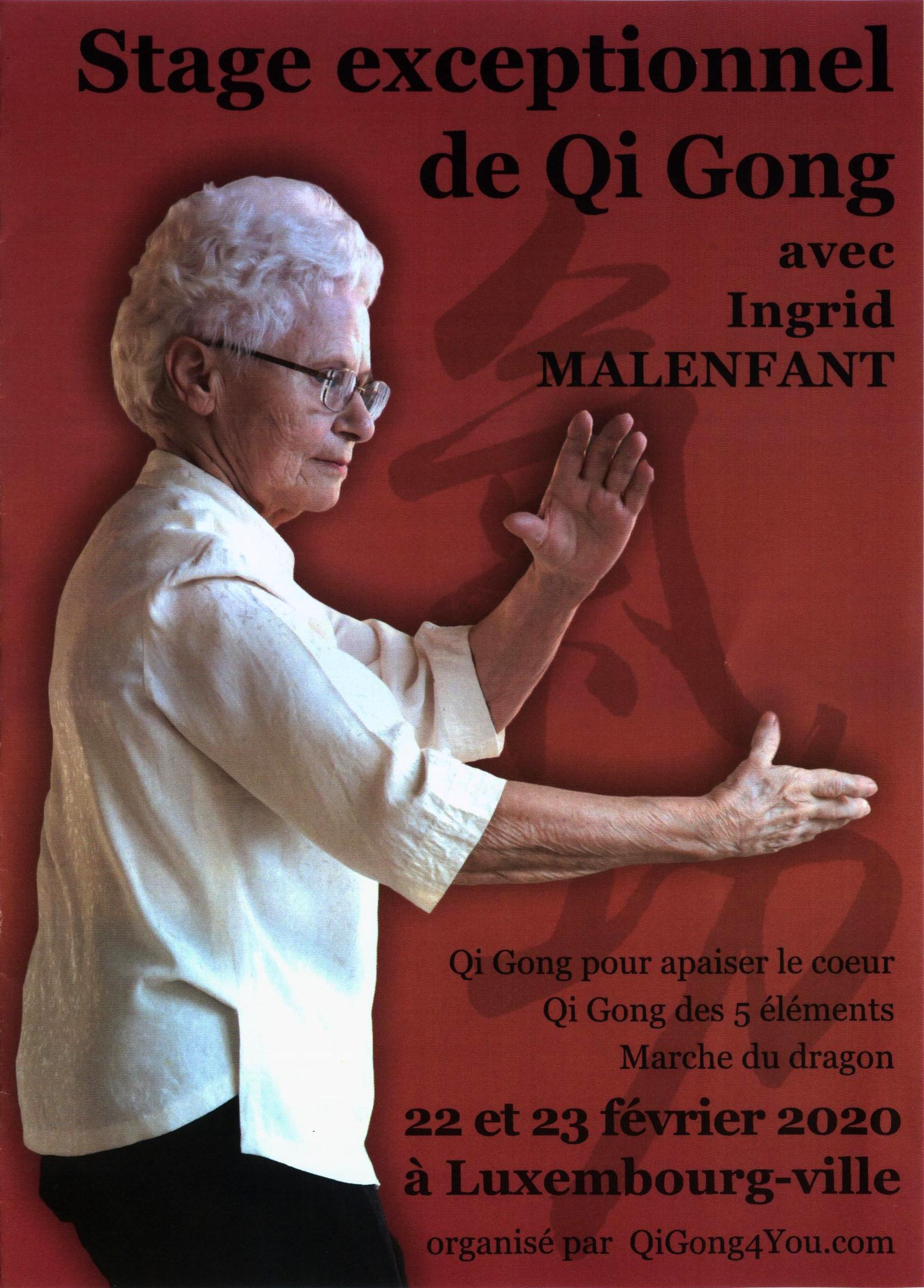 Stage à Luxembourg  Février 2020 avec Ingrid Malenfant  –  Que du BONHEUR!